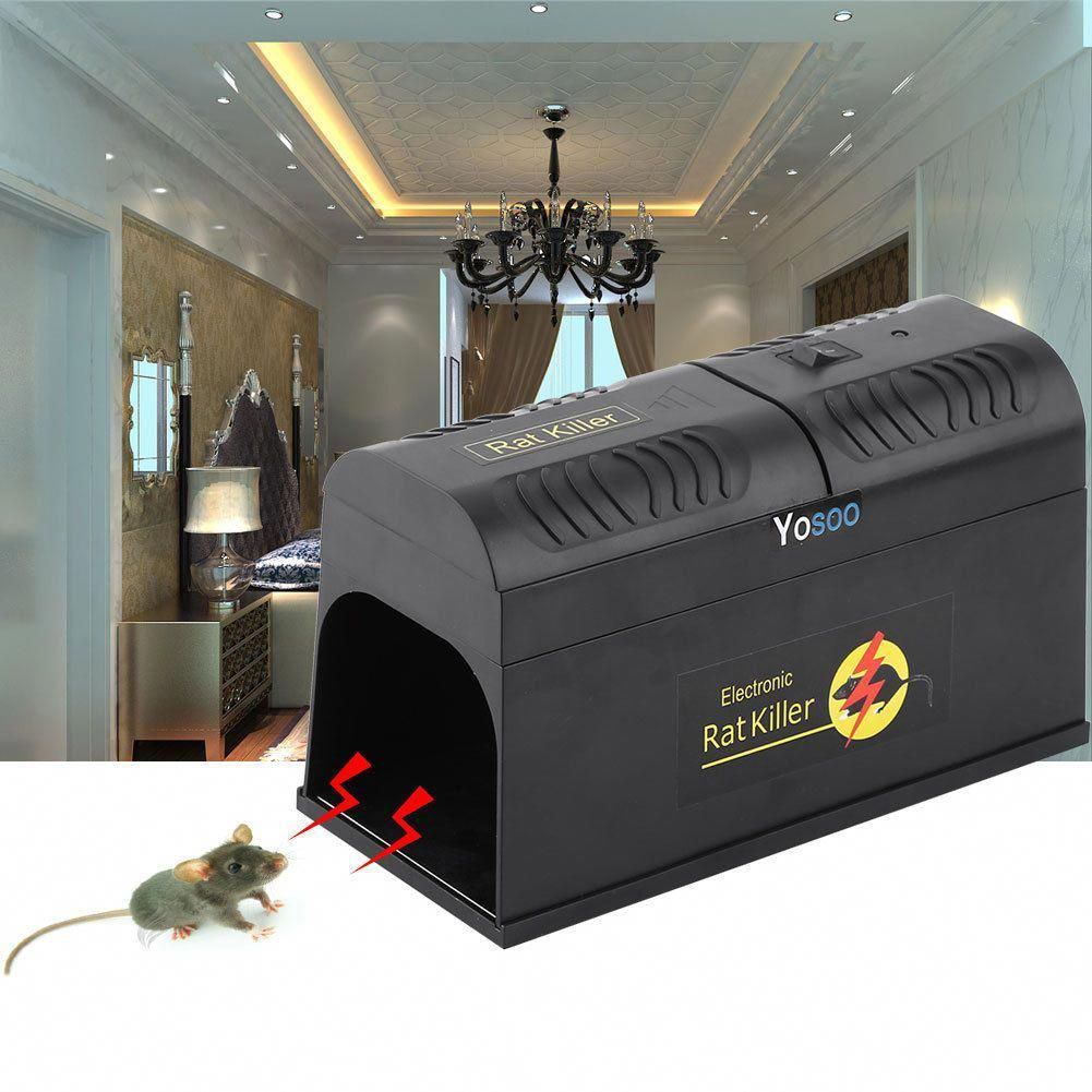 Pin On Pest Control Services
