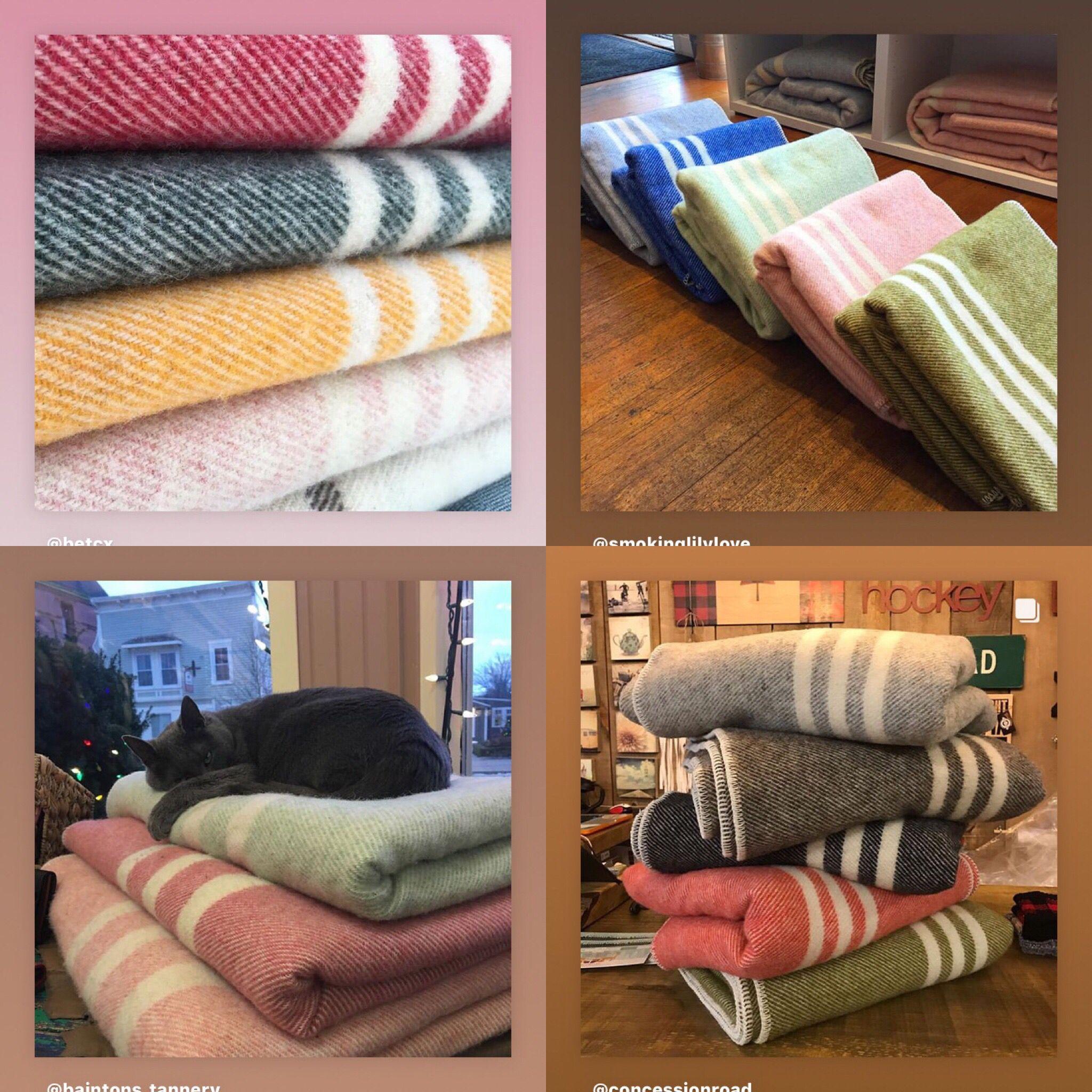 Best wool blanket in Canada Wool shop, Wool blanket