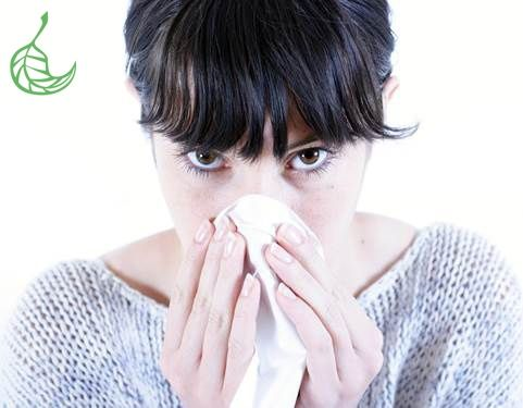 Natural Hay Fever Remedies- with a magic bullet!