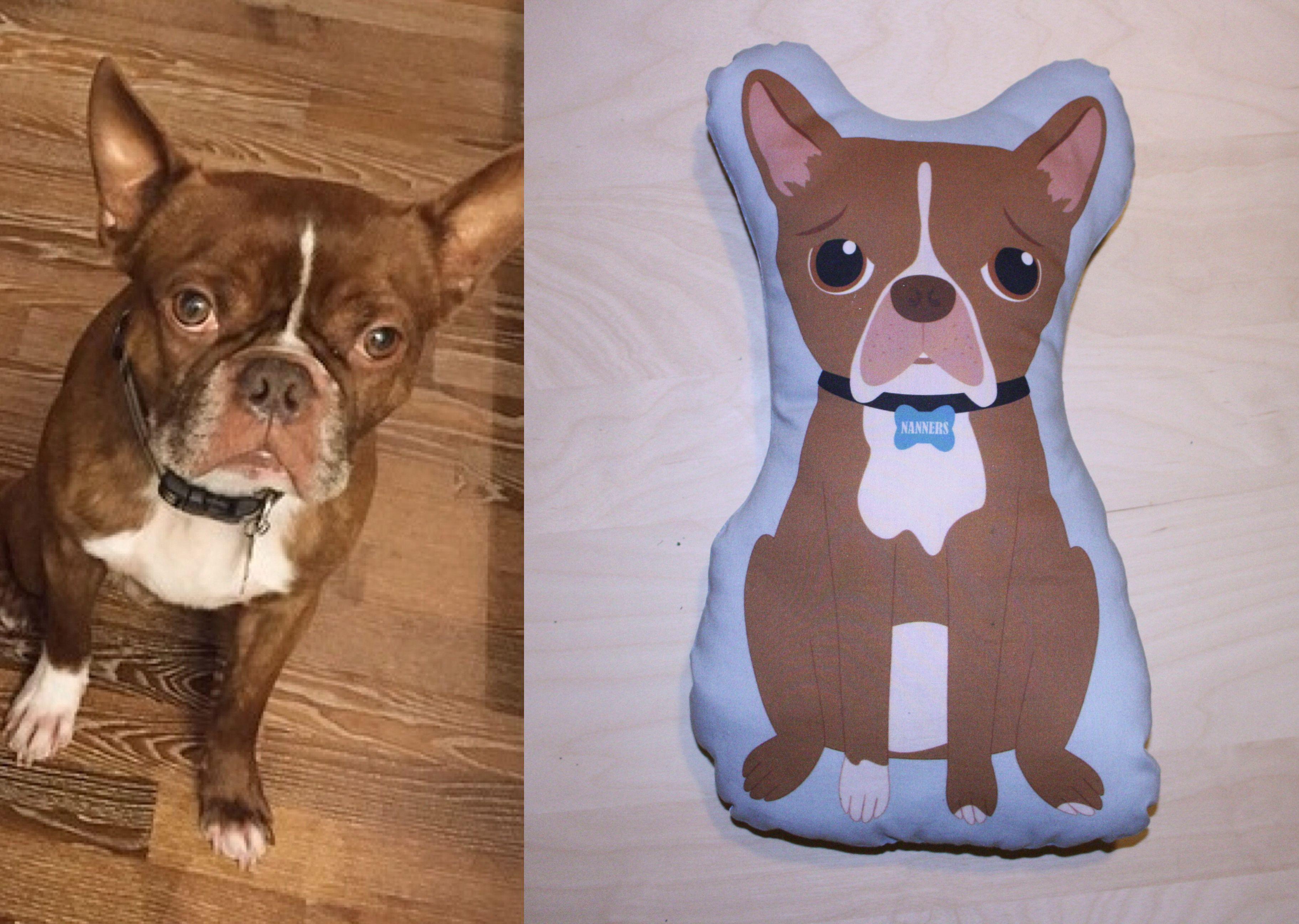Custom Pet Illustrated Pillows Cartoon Pet Portrait