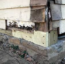 Replacing Rotten Floor Joists Google
