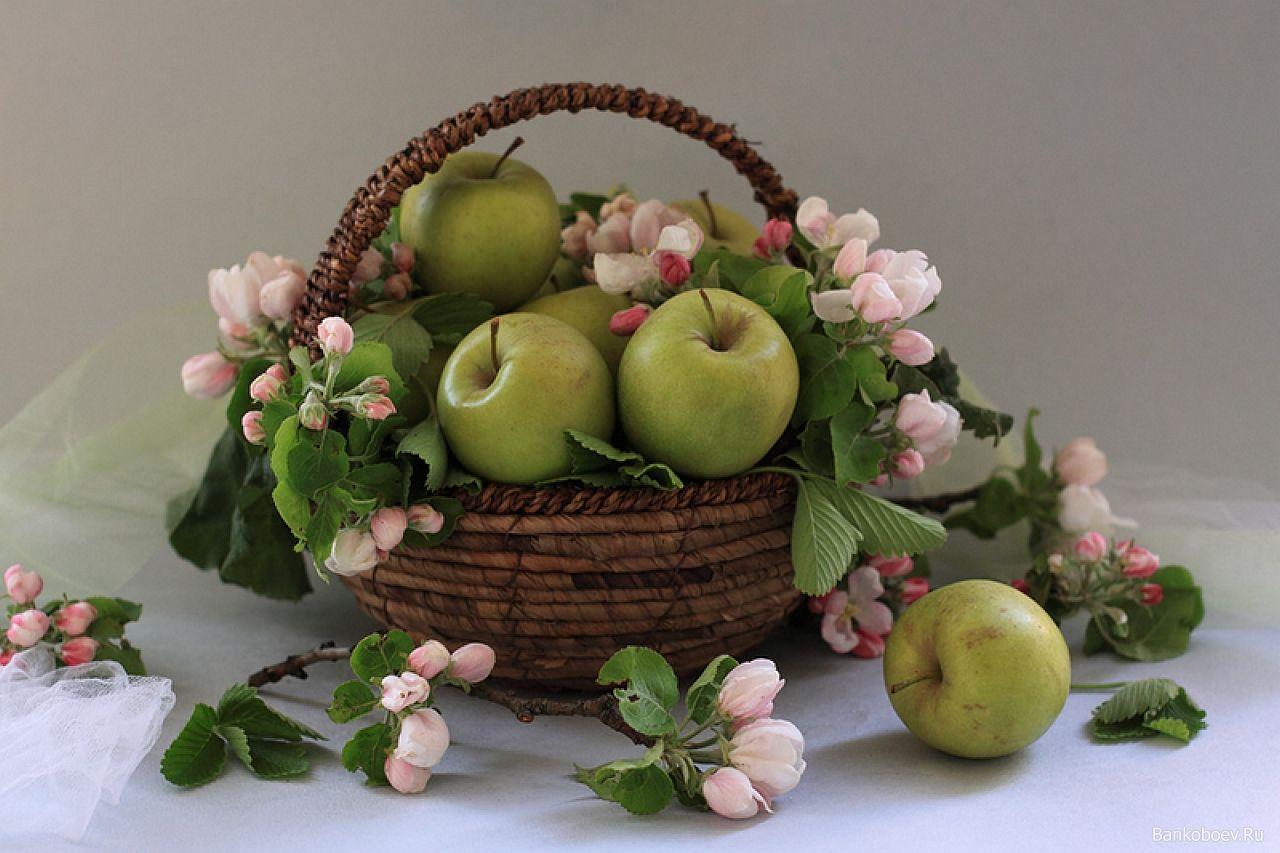 его натюрморты с цветами и фруктами в фотографиях музыкальные видео открытки