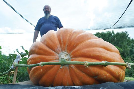 This is my big brother and his pumpkin! I'm so proud of him!