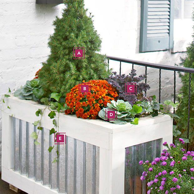 una jardinera a color todo el ao