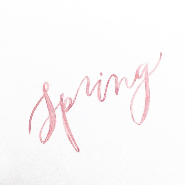 Spring Has Sprung Now Go Out An Enjoy The Sunshine Pink