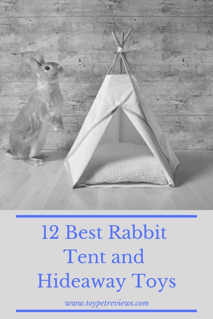 12 Best Rabbit Tent and Hideaway Toys  12 Best Rabbit Tent and Hideaway Toys