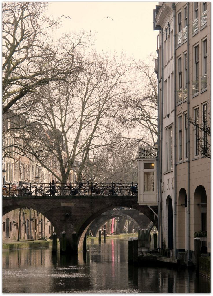 Oudegracht achter de lijnmarkt. Utrecht The Netherlands