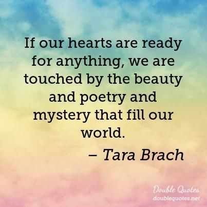 Tara Brach Quotes Entrancing Image Result For Tara Brach Quotes  Quotes  Pinterest