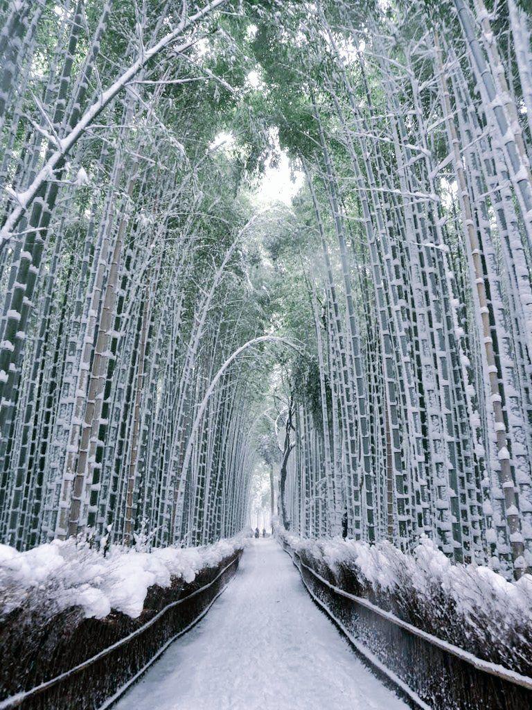 L Ancienne Capitale Imperiale Kyōto Absolument Majestueuse Sous La Neige Japon Paysage Kyoto Paysage Hiver