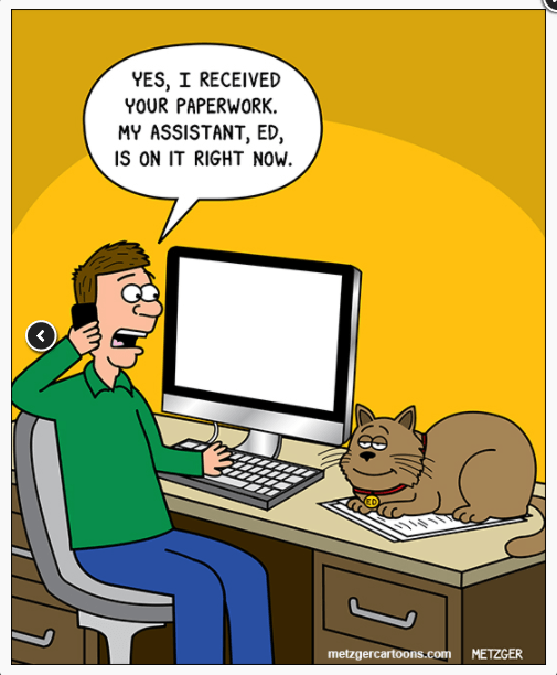 Being Awesome Is Exhausting: a Collection Of Cat Comics By Scott Metzger