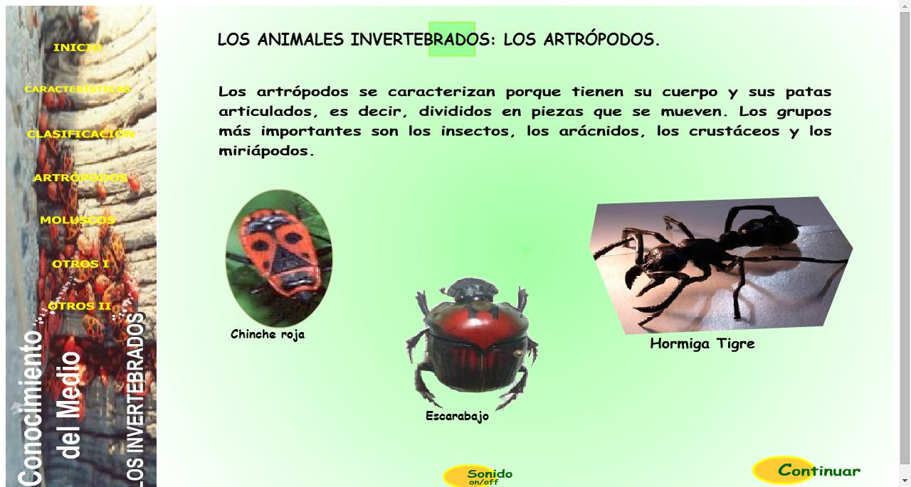 invertebrados. Información y actividades