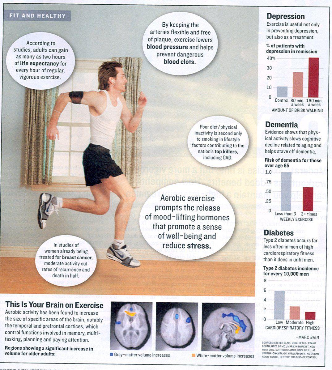 Cardio Exercise Chart