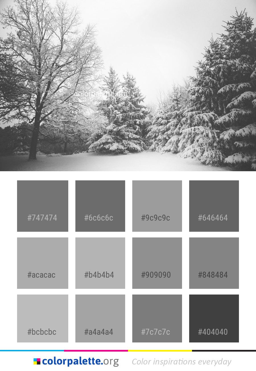 snow winter white color palette color palettes pinterest rh pinterest com