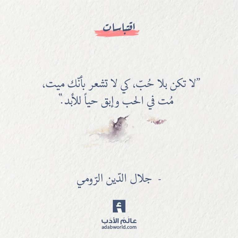 لا تكن بلا ح ب من اقوال جلال الد ين الر ومي Citation Belles Citations Mots Inspirants