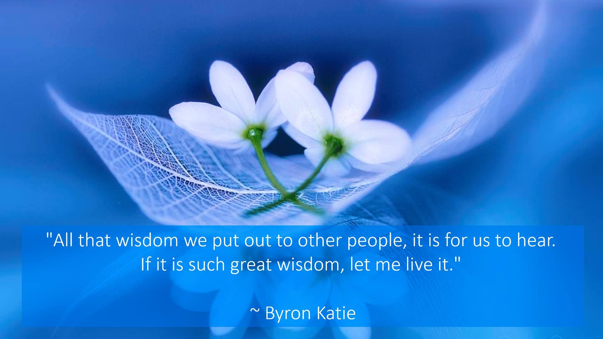 Byron Katie Quotes All That Wisdom We Put Out To Other People It Is For Us To Hear