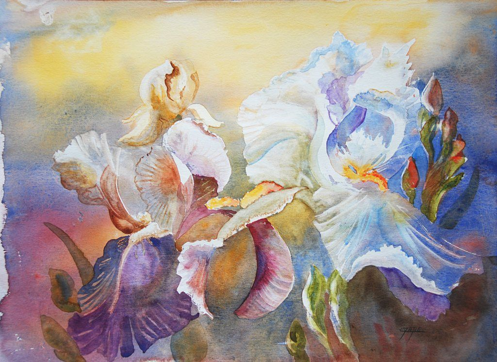 Peinture Contemporaine Tableau Aquarelle Fleurs Iris D Un Soir