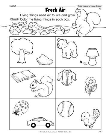 fresh air lesson plans the mailbox kindergarten 1st grade worksheets science worksheets. Black Bedroom Furniture Sets. Home Design Ideas