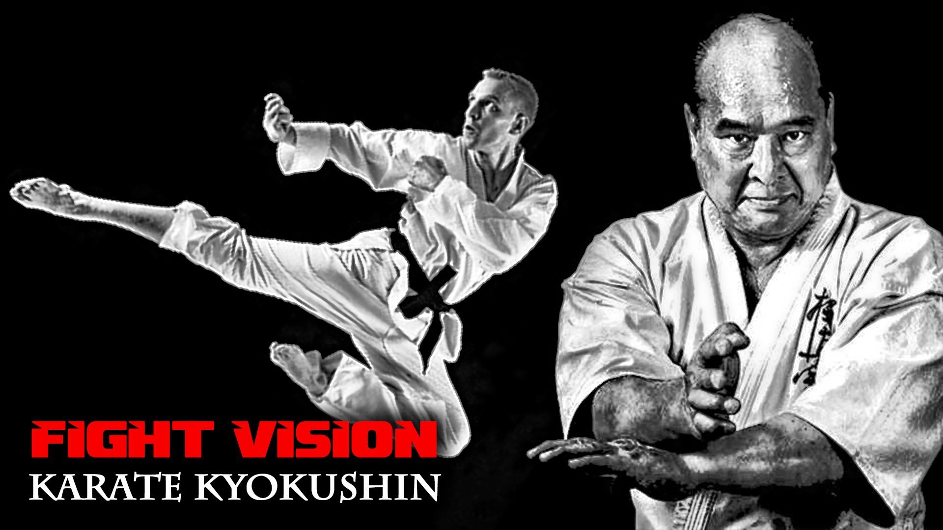 mae geri 前蹴 front kick kyokushin karate fight vision