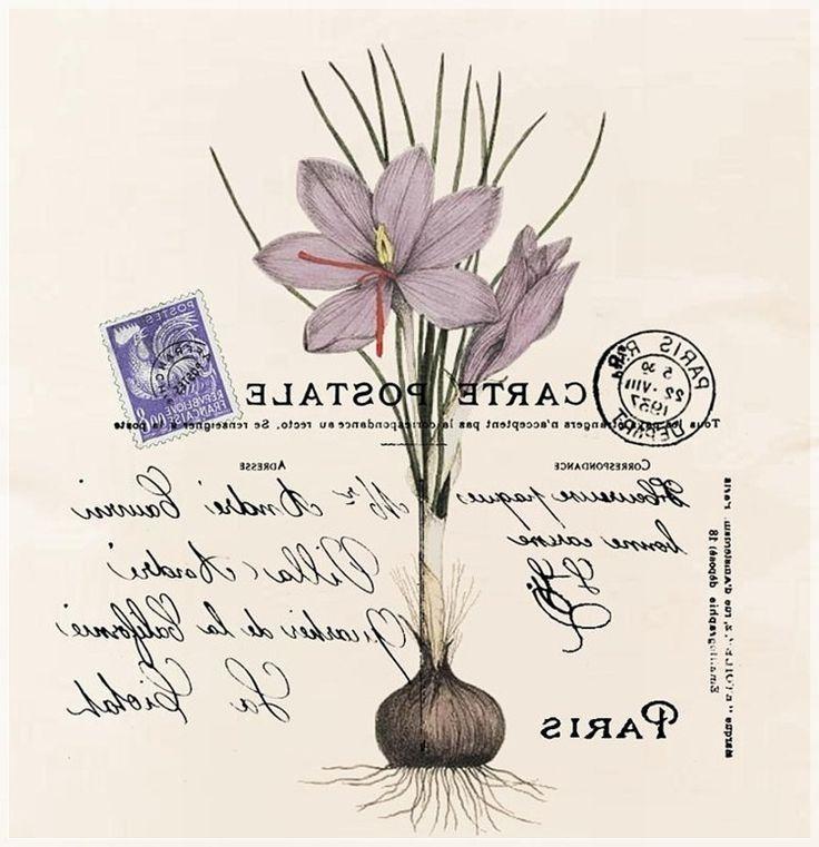 Carte postale imprimibles pinterest sublimacion for Invertir imagen espejo