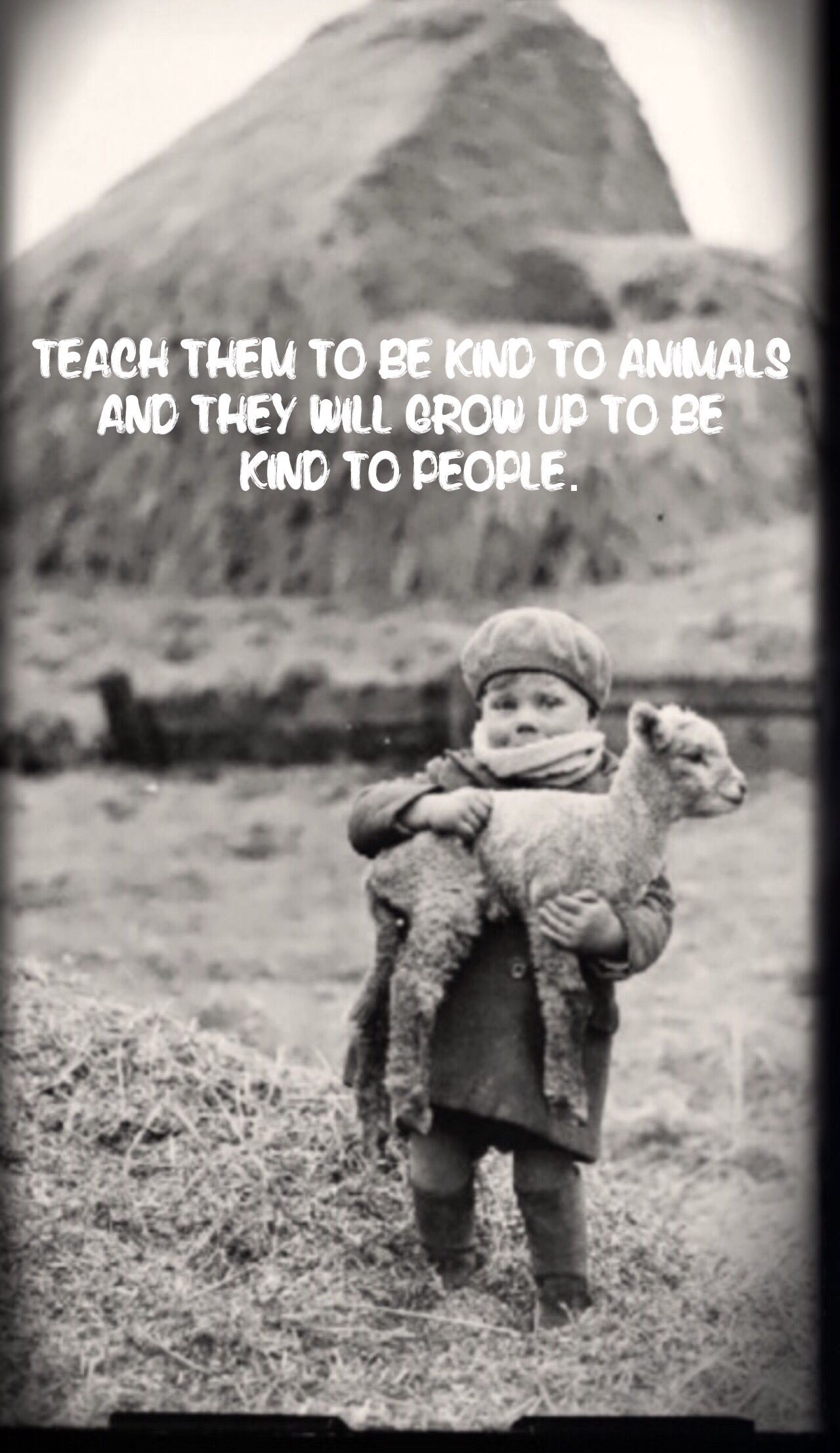 Essay on kindness to animals for kids