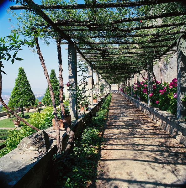 Italian pergola at Villa Medici, Florence. Garden gates