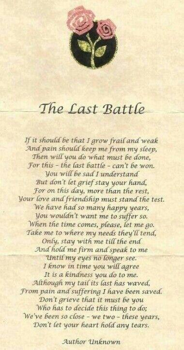 The last battle !