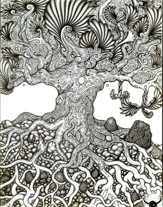 discover ideas about tree drawings
