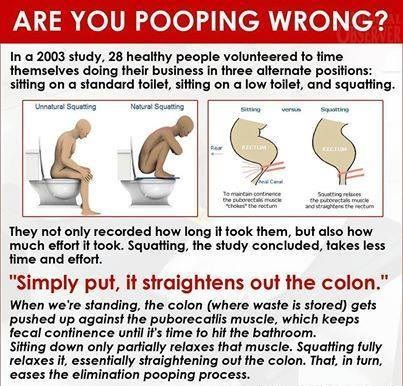Are You Pooping Wrong  Stool Color Chart    Remedies