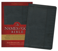"This is a cool Bible that my friend Charles told me about. It's the God's Word translation, but then the editor replaced the word ""God"" with the original Hebrew or Greek name that was used in the original texts. Really awesome way to get a new understanding of scripture!"