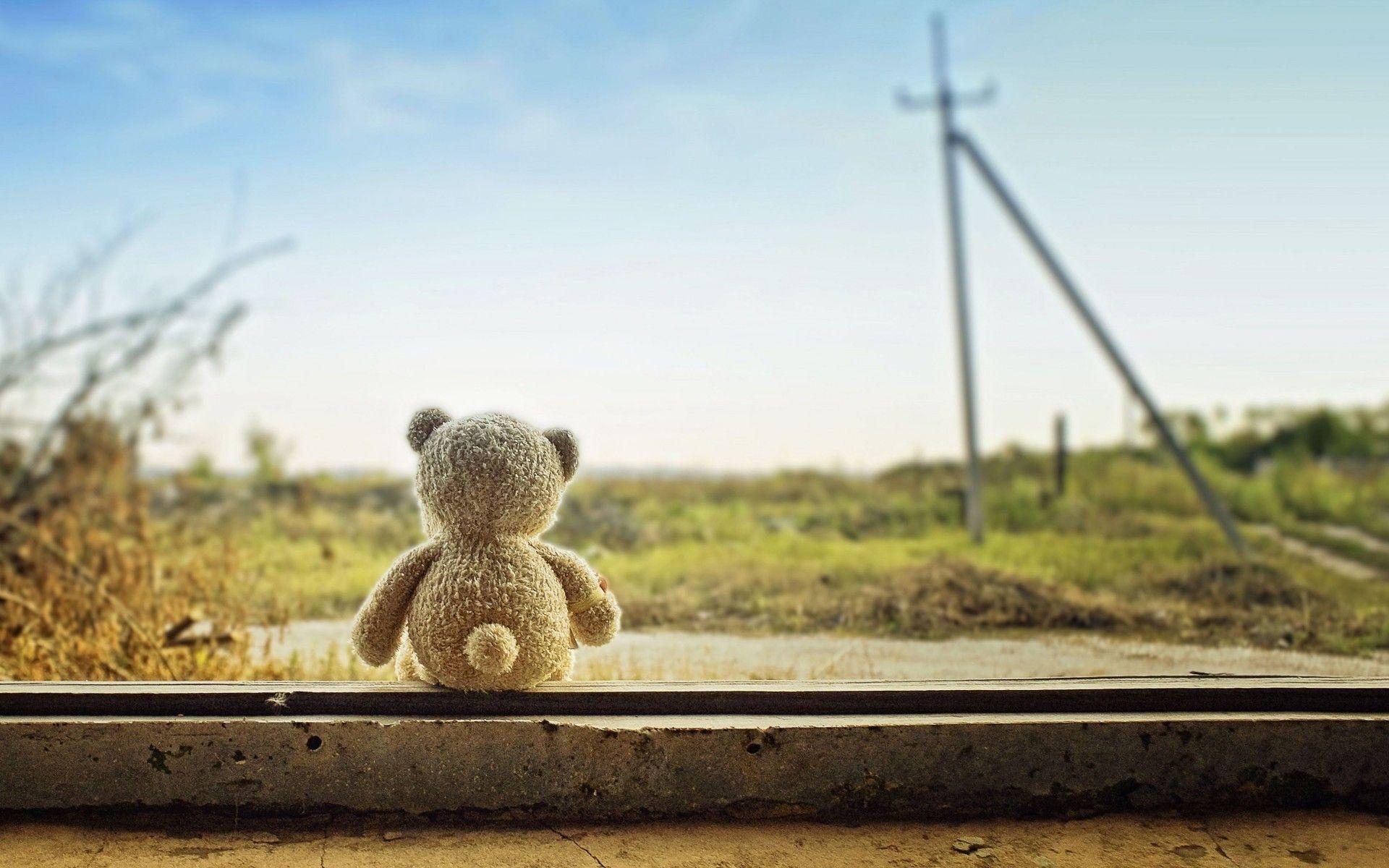A Lonely Teddy Bear