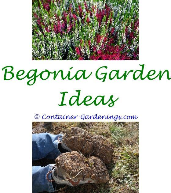 Small Front Patio Garden Ideas   Garden Article Ideas.potato Garden Ideas  Small Garden Ideas