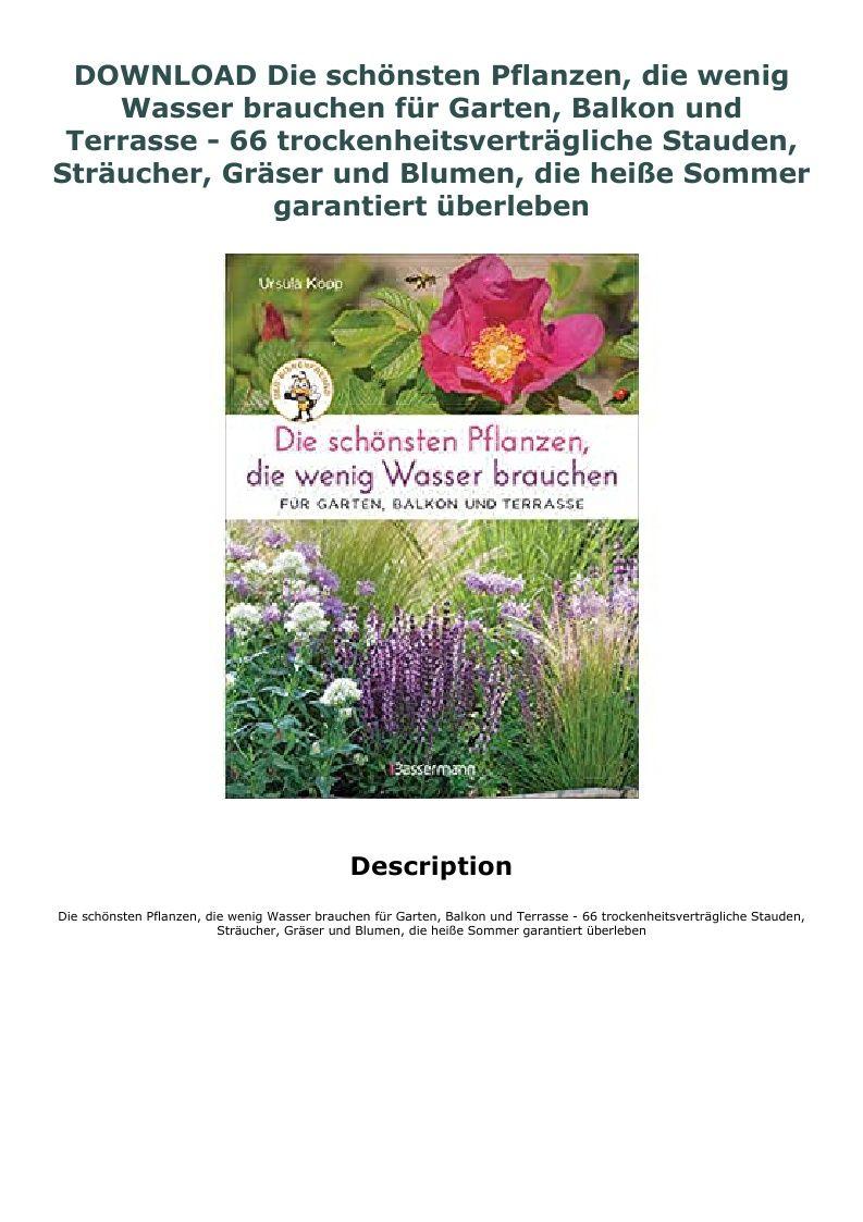 Download Die Schonsten Pflanzen Die Wenig Wasser Brauchen Fur Plants