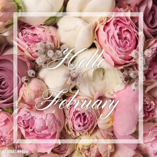 Hello February ♡ | Birthday wishes greetings, Saint valentine, Hello january