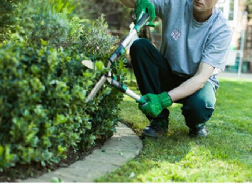 Gardening Services Garden Services Lawn Care Business Garden Maintenance