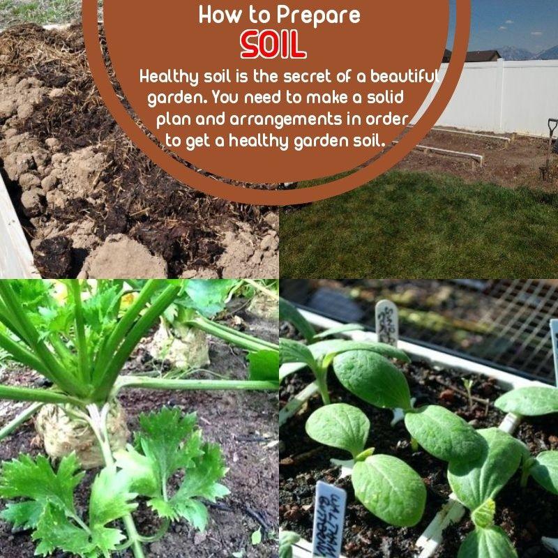 How to Prepare Soil for Gardening? Garden, Garden soil