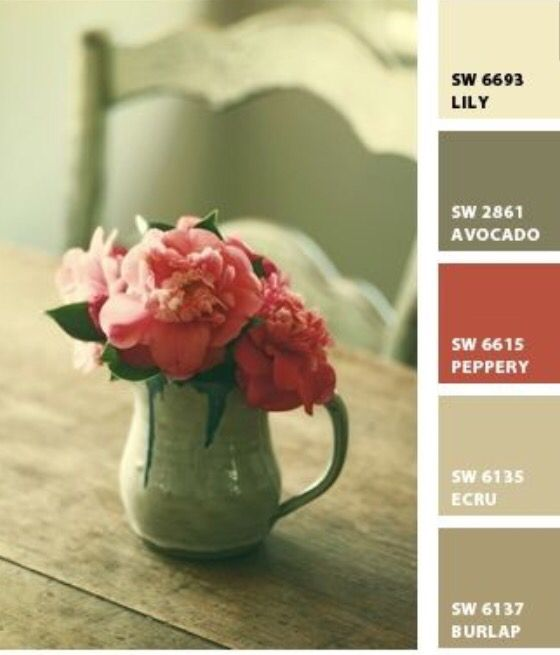 Perfect color pallet for French country home....warm it up with Sherwin Williams! Embellished Home Designs