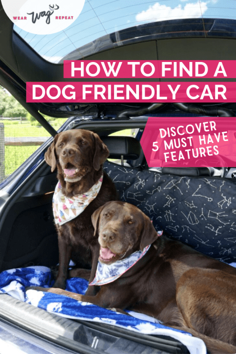 Finding A Dog Friendly Car On Autotrader Dog Friends Dogs Dog Friendly Vacation