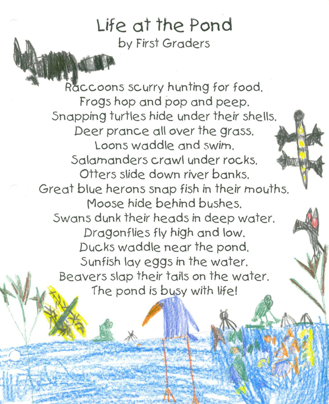 Food Web Poem