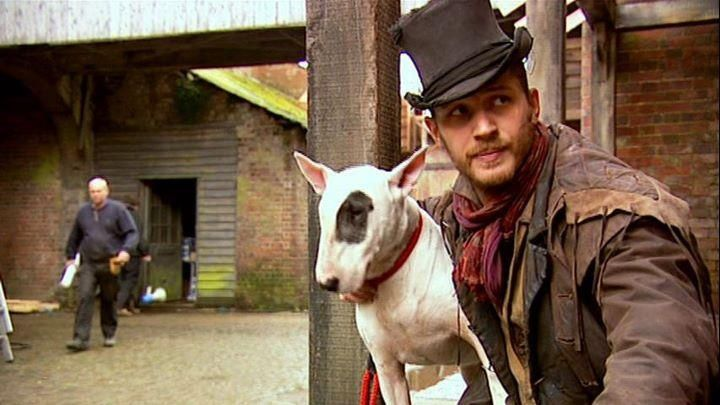 Two Cuties Tom Hardy And Bull Terrier