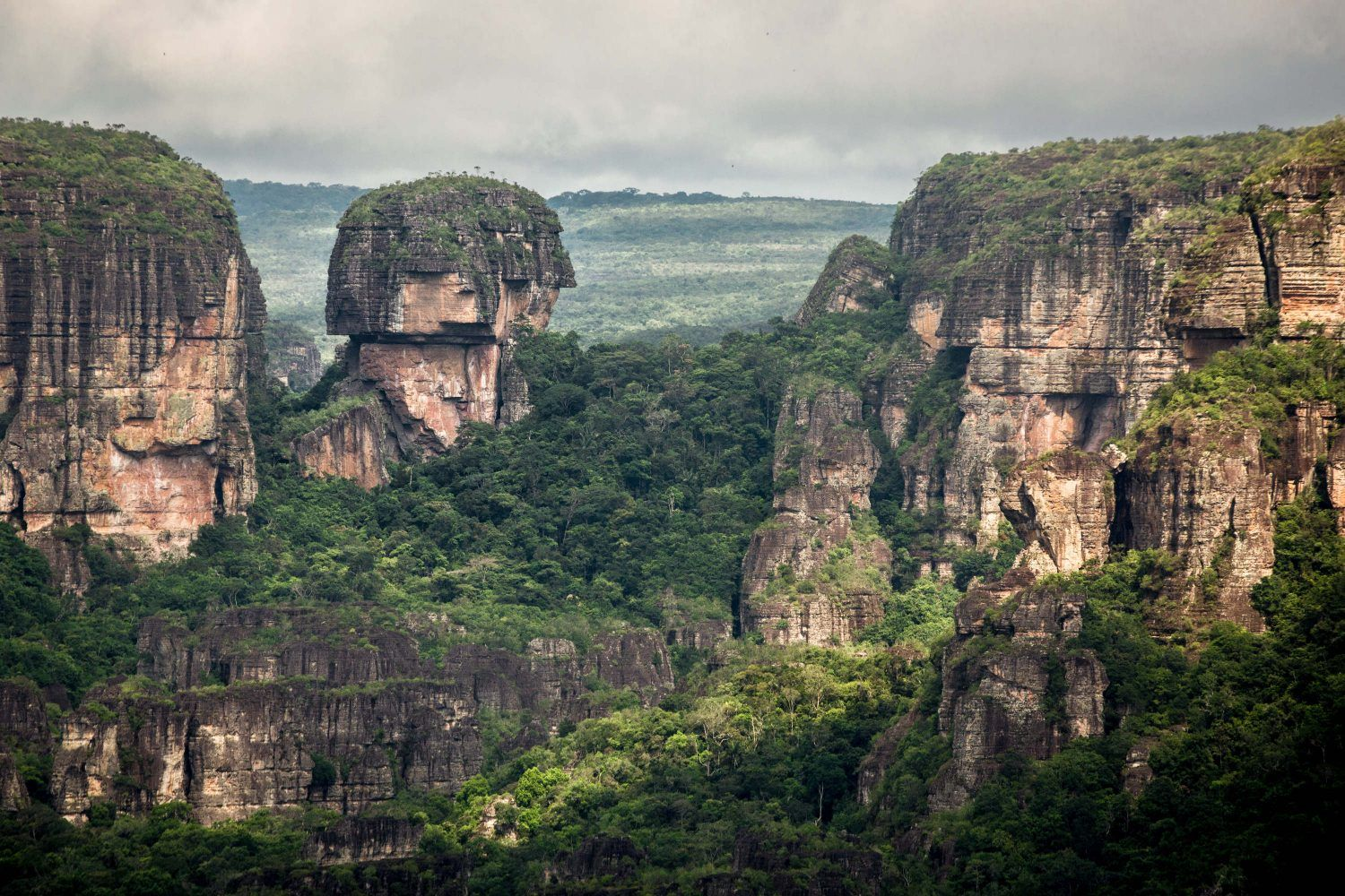 Colombia has the world's largest tropical rainforest