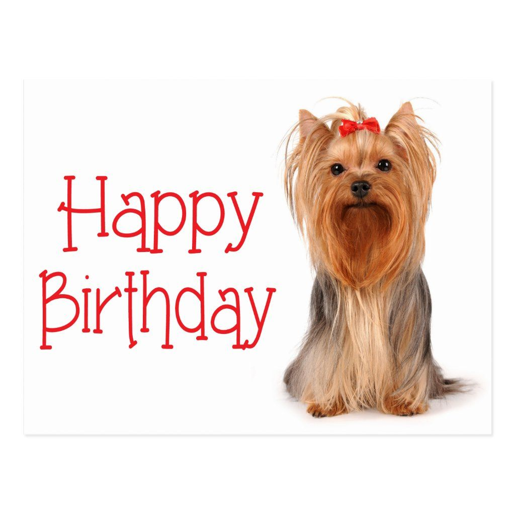 Happy Birthday Yorkshire Terrier Puppy Postcard Zazzle Com In 2021 Happy Birthday Dog Dog Birthday Wishes Happy Birthday Emoji