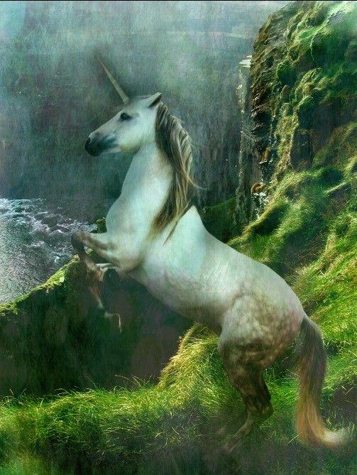 Realistic White Unicorn Near The Waterfall By Escondidographics