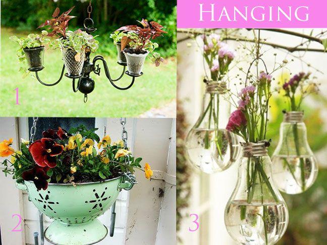 DIY plant ideas
