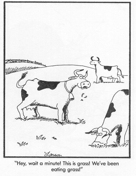 """Hey, wait a minute! This is grass! We've been eating grass!"" —Gary Larson, Far Side"