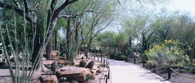 Ethel M Chocolates U0026 Cactus Garden
