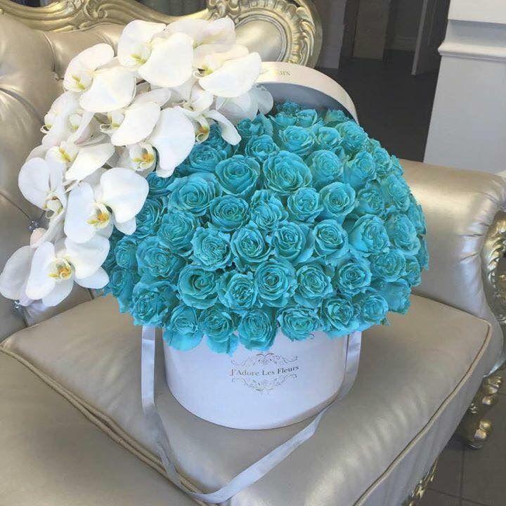 Pin by kuukkik on roses | Pinterest | Flowers