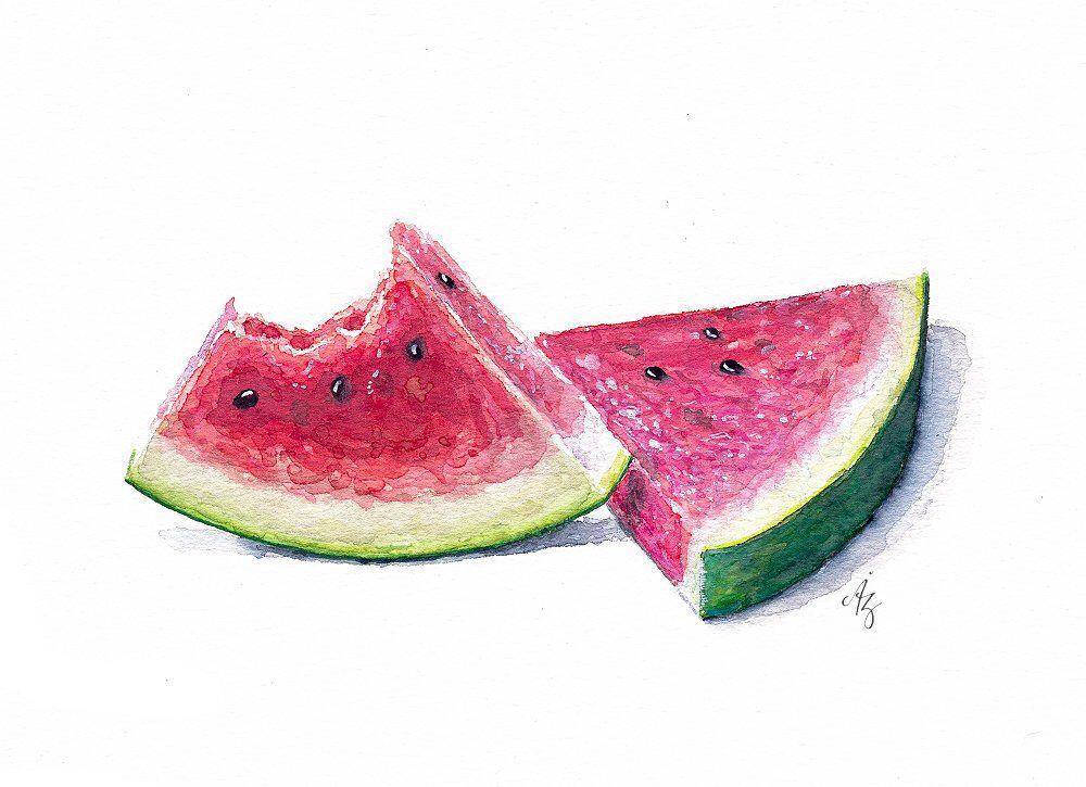 Watercolor Watermelon Art Print Watermelorn Illustration