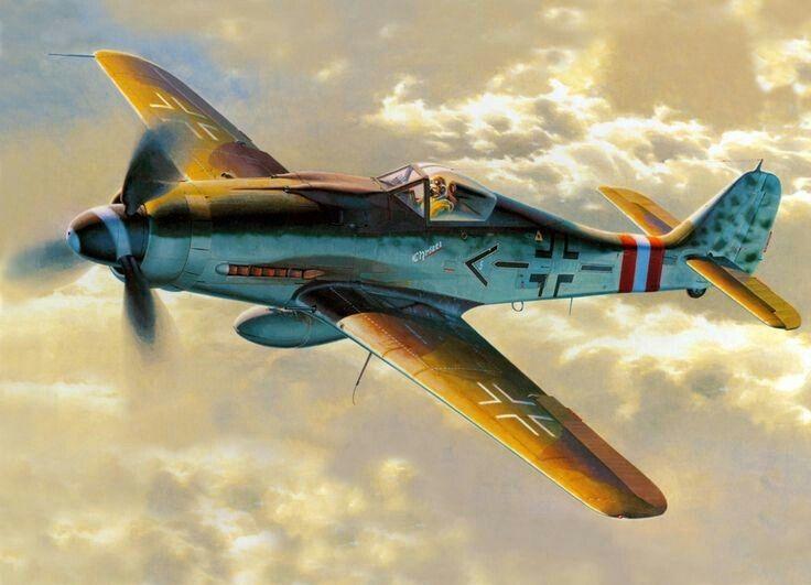 "Focke Wulf FW 190 D9 - Stab JG6 "" Christl "" - Gerhard Barkhorn"