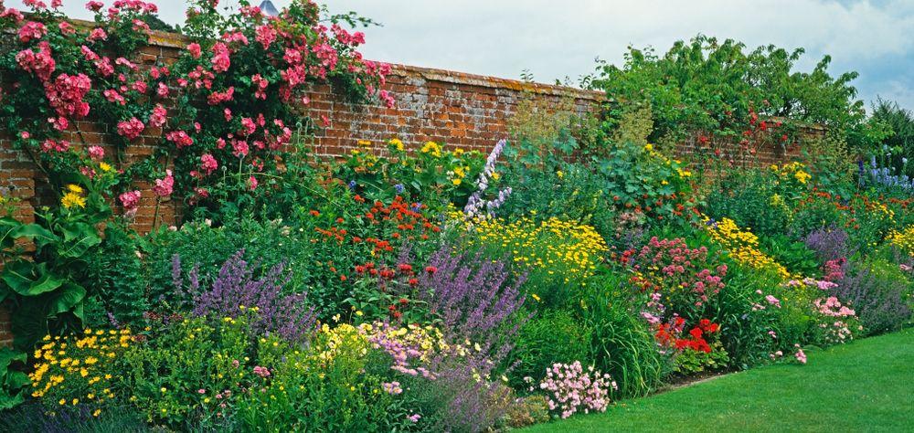 Pin by Tom Angel - Garden Designer (G on Planting Design ...
