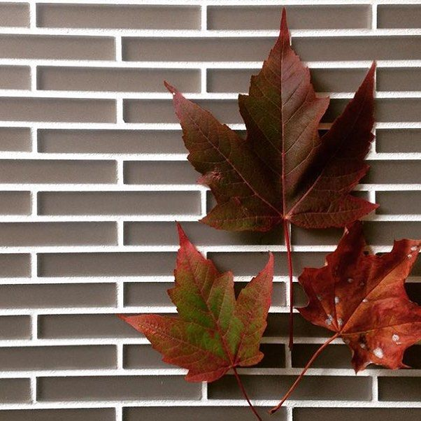 With their soft #burgundy undertones these linear #tiles from @edgewaterstudio really make our hearts sing on this overcast and rainy #Autumn day.  #backsplash #bathroomdesign #ceramictile #design #decor #homedesign #hospitalitydesign #instahome #interiors #interiordesign #kitchendesign #tileometry #tilelove #tilestyle #tileaddiction #tilework #walldecor #walltile by tileometry